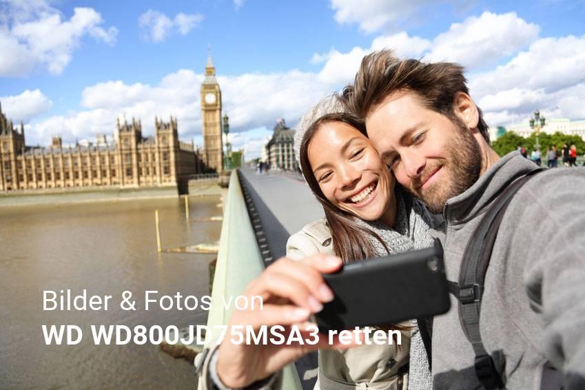Datenrettung gelöschter Foto & Bilddateien von WD WD800JD75MSA3