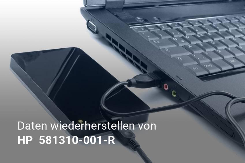 Gelöschte Dateien von HP  581310-001-R günstig wiederherstellen