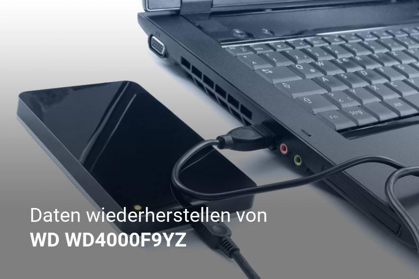 Gelöschte Dateien von WD WD4000F9YZ günstig wiederherstellen