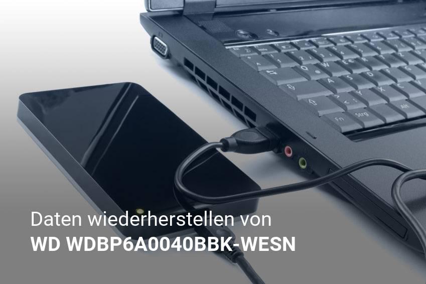 Gelöschte Dateien von WD WDBP6A0040BBK-WESN günstig wiederherstellen